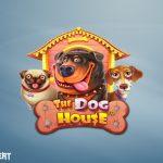 Spielautomat The Dog House - kostenlos spielen, übersicht